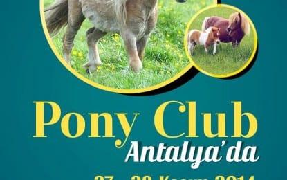 Büyükşehir Belediyesi'nden  çocuklar için at biniş etkinliği