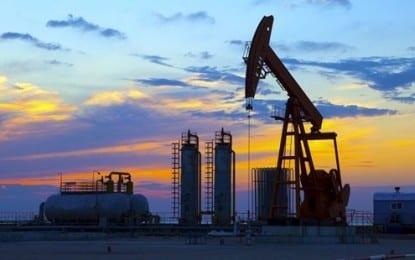 OPEC üyeleri, günlük 30 milyon varil üretime devam etme kararı aldı