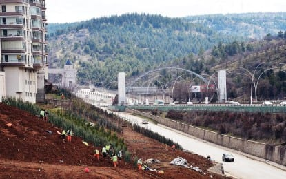 Başkent Ankara'ya 43 Bin Ağaç Daha Dikiliyor…