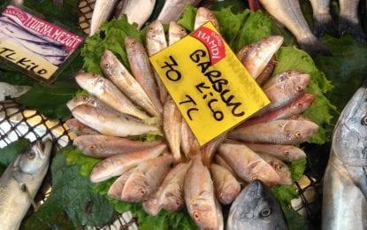 Balık fiyatlarında kral belli oldu