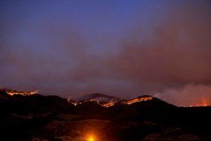 CHP İzmir Milletvekilleri İzmir'deki orman yangınıyla ilgili meclis araştırması istedi